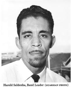 Harold Saldenah
